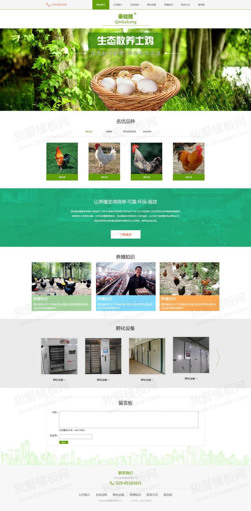 绿色扁平风格的养鸡养殖场企业设计模板psd下载